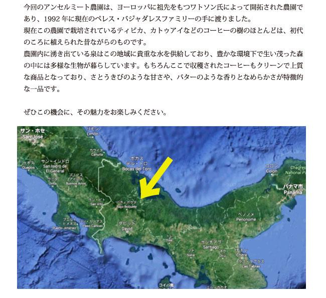 パナマコーヒー アンセルミート農園コーヒー豆紹介03