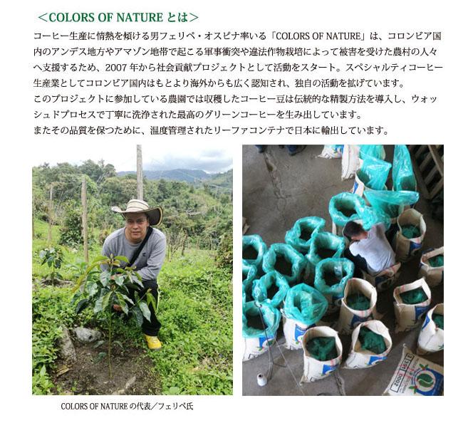 コロンビアコーヒー マリア農園003-2