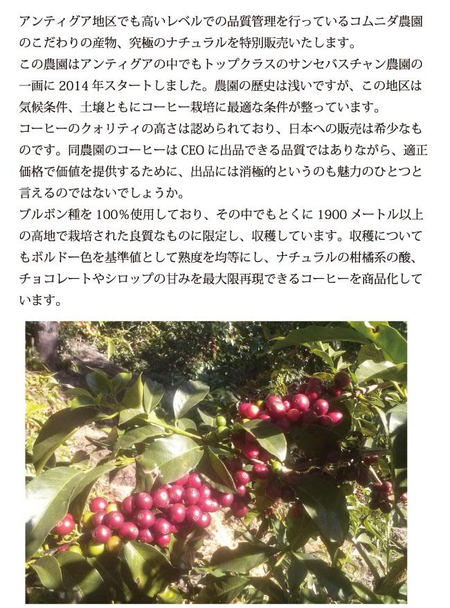 グァテマラ・コムニダ説明02
