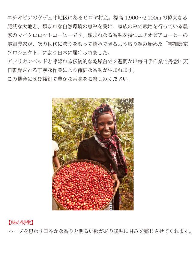 エチオピアコーヒー モカ・アビシニア コーヒー説明02
