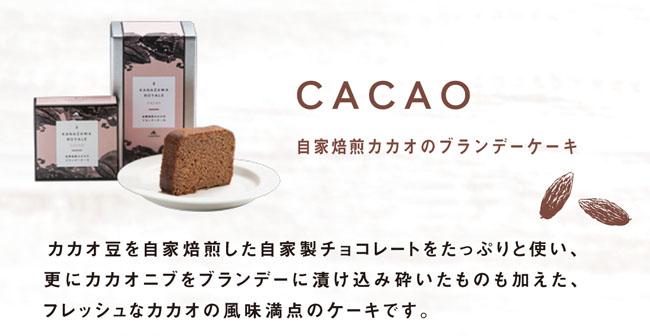 金澤ロワイヤルカカオブランデーケーキ メイン説明