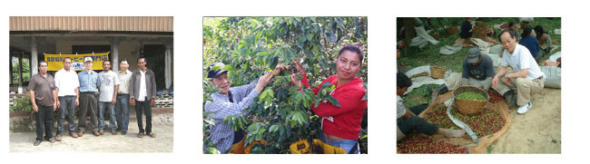 キャラバンサライの認証コーヒー基準について説明6