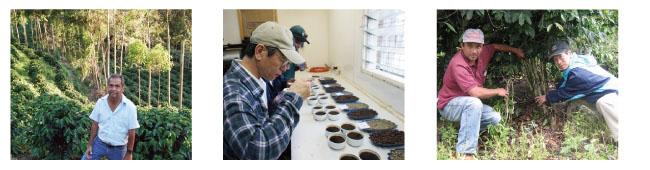 キャラバンサライの認証コーヒー基準について説明7