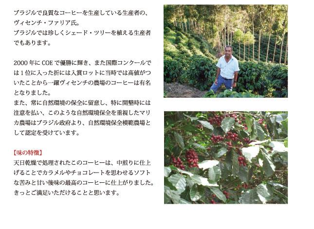 ブラジル・マリカ農園コーヒーの説明02