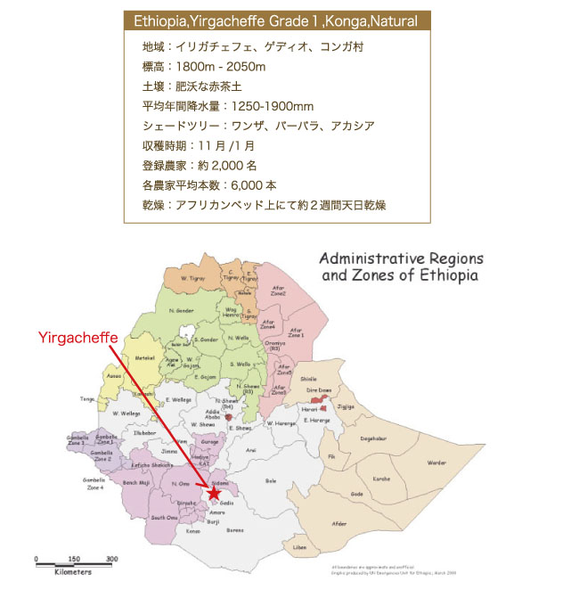 エチオピアコーヒー モカ・アビシニア コーヒー説明03